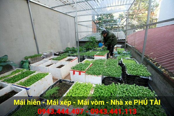Vòm sân thượng trồng rau PT01
