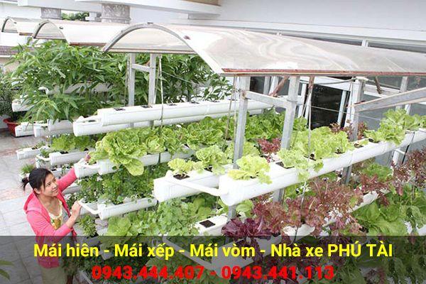 Vòm sân thượng trồng rau PT07
