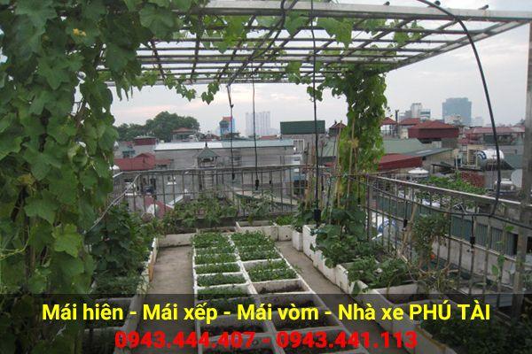 Vòm sân thượng trồng rau PT08