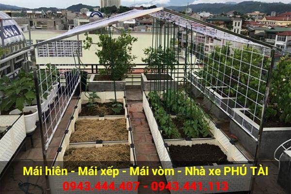 Vòm sân thượng trồng rau PT09